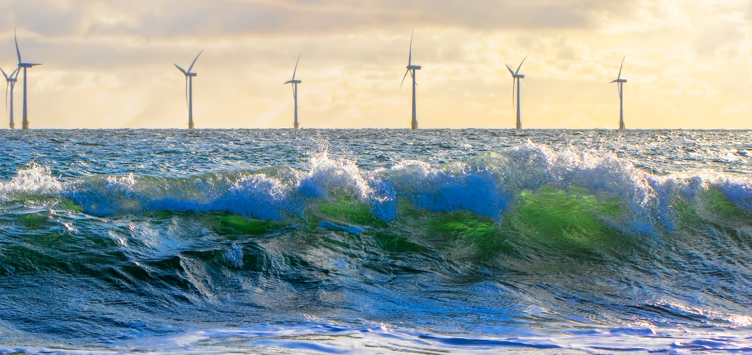 Net Zero is coming – Catch (and Ride) the Waves of Change